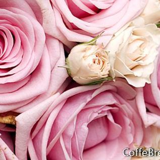 Mawar dan Lavender untuk Parfum Botani