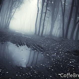 Into the Black Nowhere Book -katsaus