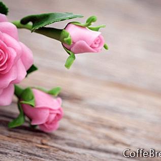 Romances d'automne pour réchauffer votre cœur