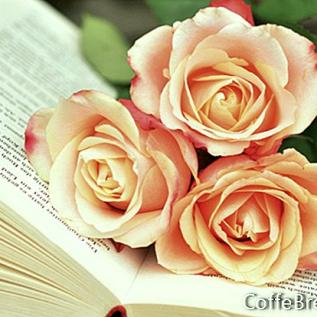 Membedakan Apa yang Anda Baca