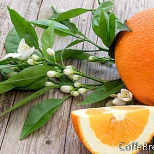 4. srpnja Recept za limunadu bez glutena