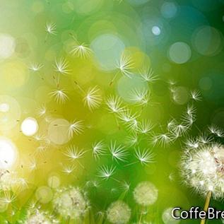 Pollen herausfiltern