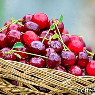 Pavasario maisto, kurį galima rasti ūkininkų rinkose