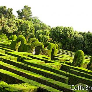 Anglická zahrada Delphiniums