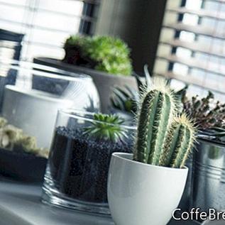 Biljke za male prostore