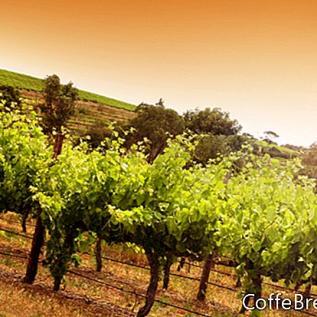 Árboles nativos de California