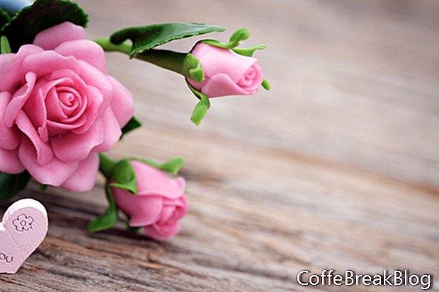 Neue Frühlingsromantik