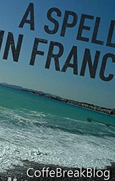 איות בצרפת ביקורת ספרים