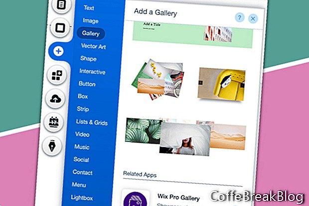 Уебсайт на Wix от Scratch - Wix Pro Gallery 1