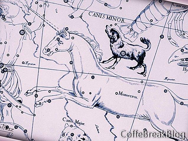 Canis Major - suurem koer