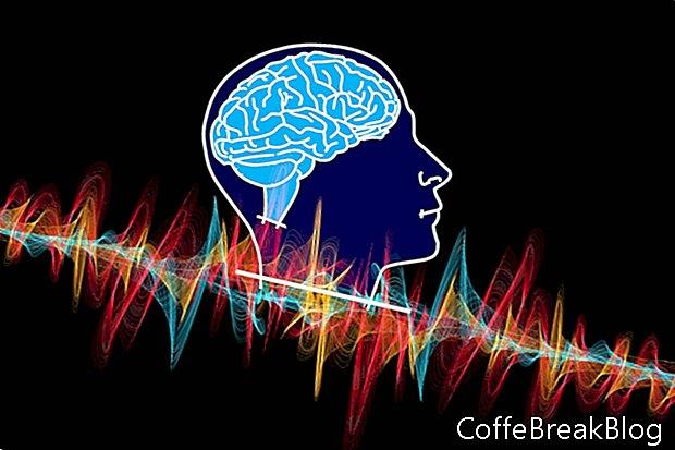 Penelitian Gelombang Otak dan ADD Subtypes