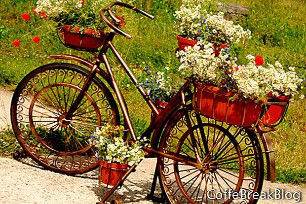Осінні квіти для контейнерів