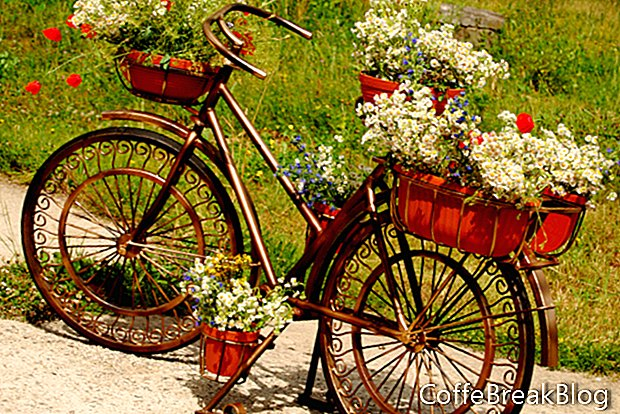 Pianifica il tuo giardino contenitore