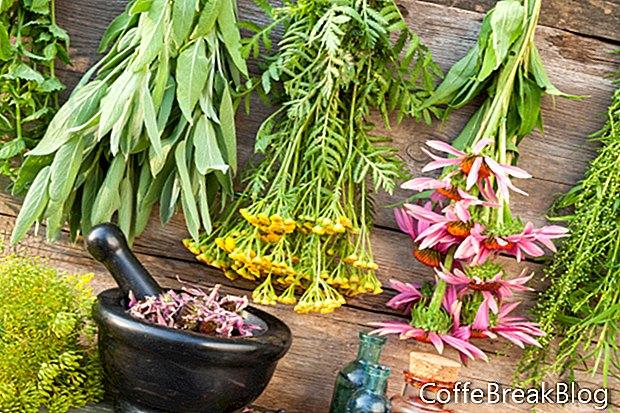הקלה באלרגיה צמחי מרפא