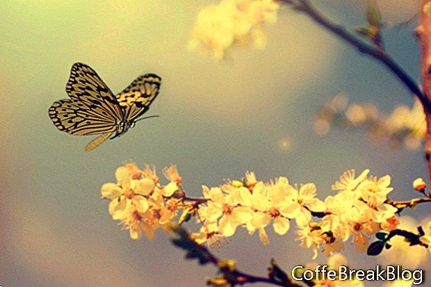 Einfache Tipps für den Frühjahrsputz