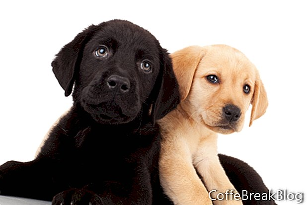 Rompecabezas de tres cachorros