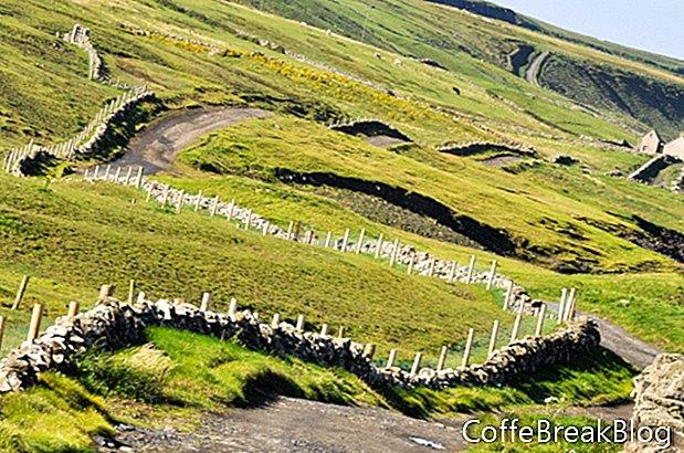 映画の中のアイルランド