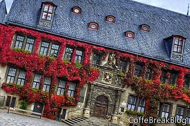 תיבות החלונות הגרמניות וגני המרפסת
