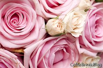 Słodki zapach perfum - tworzenie własnej mieszanki